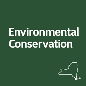 NYS Department of Environmental Conservation